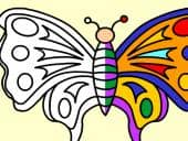 Colour in A Butterfly