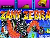 Zany Zebra 2