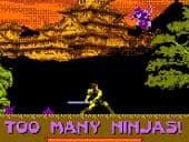 Too Many Ninjas