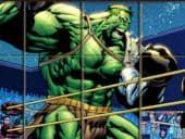 Spin And Set Hulk Puzzle