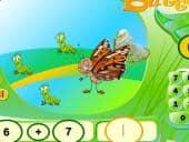 Maths Butterfly